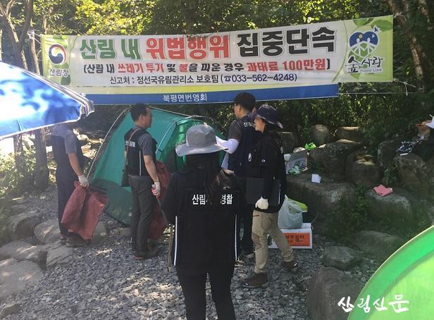 사진1. 산림 내 위법행위 집중 단속.jpg