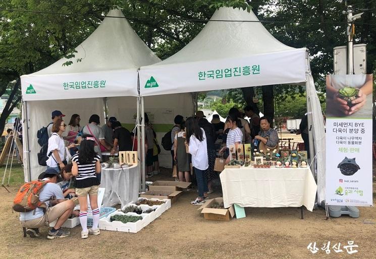 (숲과사람 사회적협동조합) 미세먼지 bye 다육식물 분양.jpg
