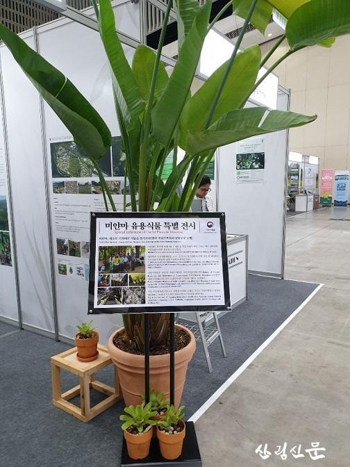 국립수목원 미얀마 유용식물 특별전시.jpg