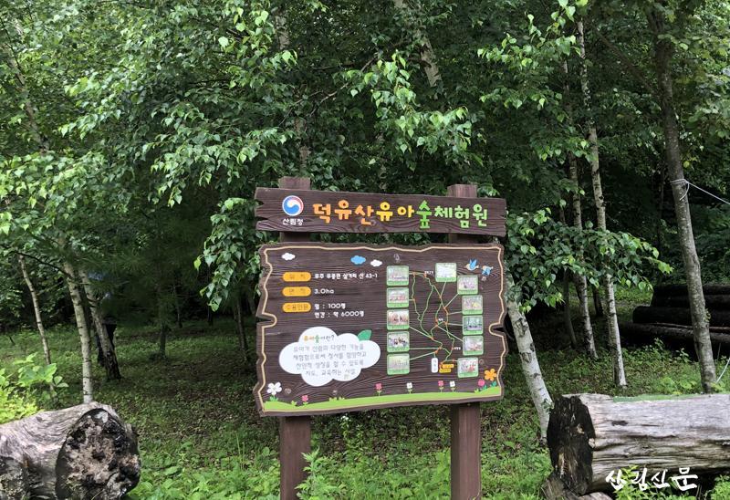 001-유아숲.jpg